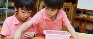 Choice of Fremont preschools in California